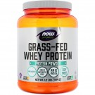 Grass-Fed Whey Protein Concentrate- Natural Unflavored (544 gram) - Now Foods