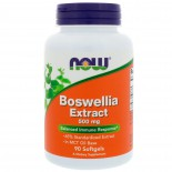 Boswellia Extract 500 mg (90 softgels) - Now Foods