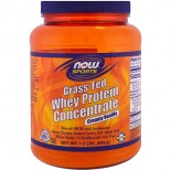 Grass-Fed Whey Protein Concentrate- Creamy Vanilla (544 gram) - Now Foods