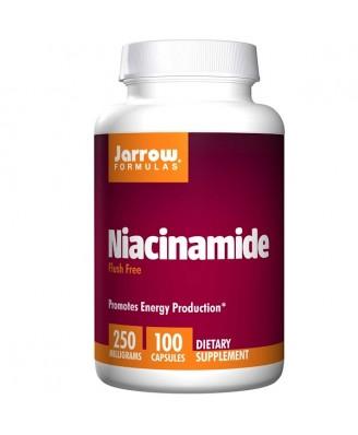 Niacinamide 250 mg (100 Capsules) - Jarrow Formulas