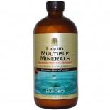 Liquid Multiple Minerals, Natural Grape Flavor (480 ml) - Nature's Answer