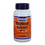 Olijfblad Extract 500 mg (60 vegicaps) - NOW Foods
