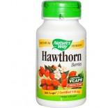 Hawthorn Berries (100 vegetarian capsules) - Nature's Way
